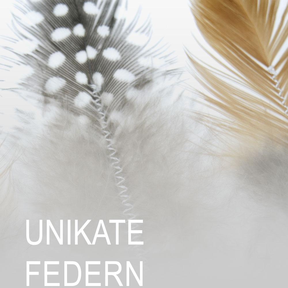 UNIKATE-Federn